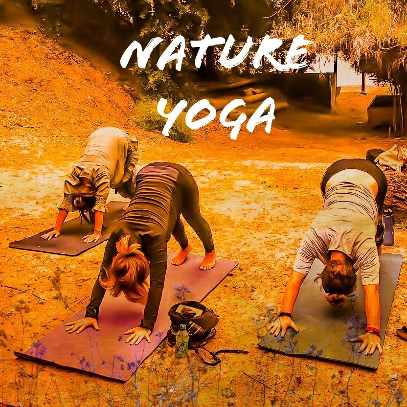 Nature Yoga Workshop M Online
